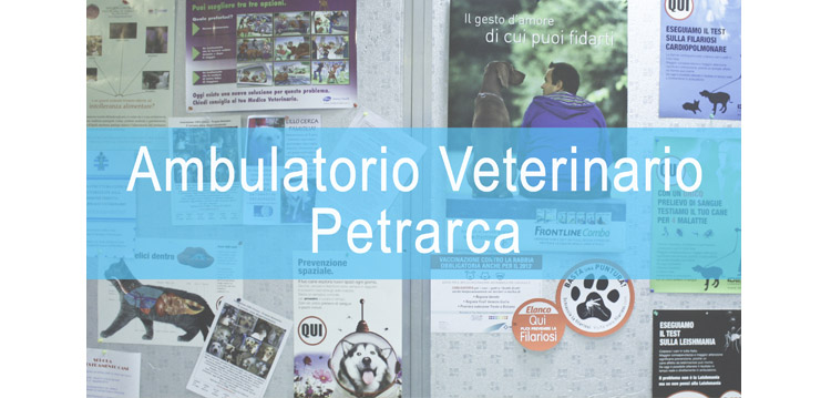 La clinica veterinaria