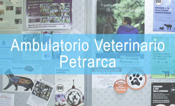 Staff ambulatorio veterinario Petrarca